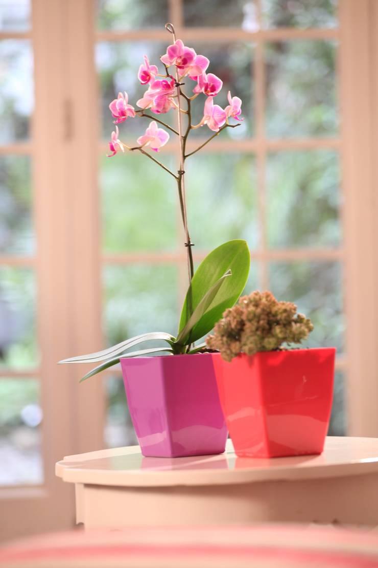 Matera small magenta en Plástico 100% Reciclado: Jardín de estilo  por Viridis Productos Eco Amigables