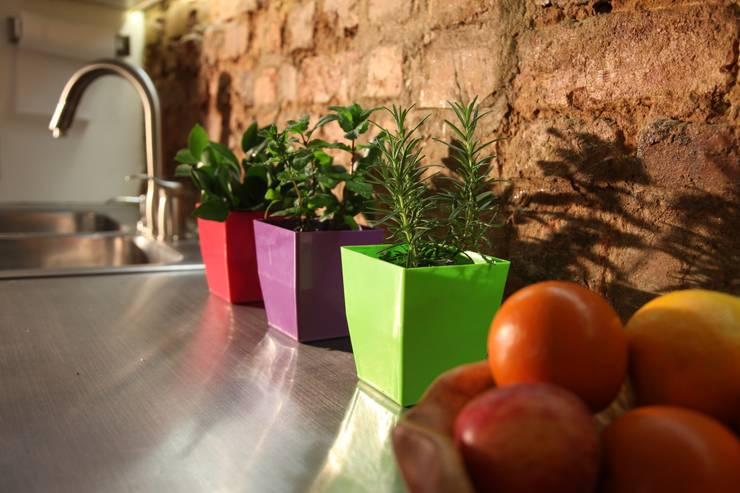 Matera small Verde en Plástico 100% Reciclado: Jardín de estilo  por Viridis Productos Eco Amigables