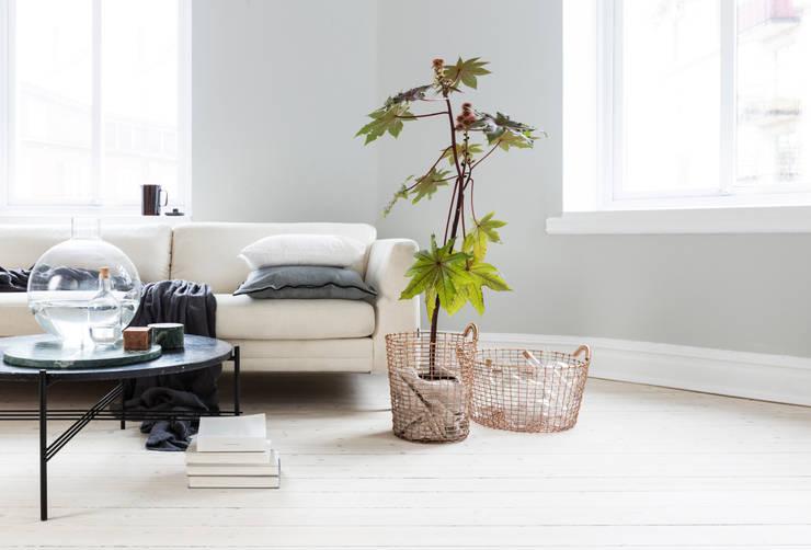 scandinavian Living room by Korbo