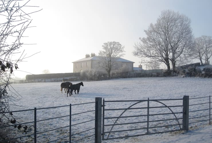 A frosty morning at this Neo-Geogian country house set in an idyllic Irish landscape Maisons classiques par Des Ewing Residential Architects Classique