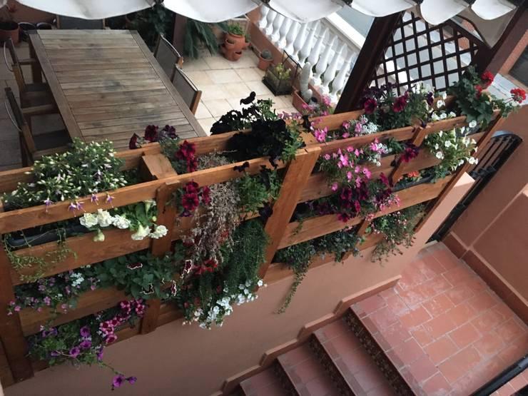 Garden  by Mideco