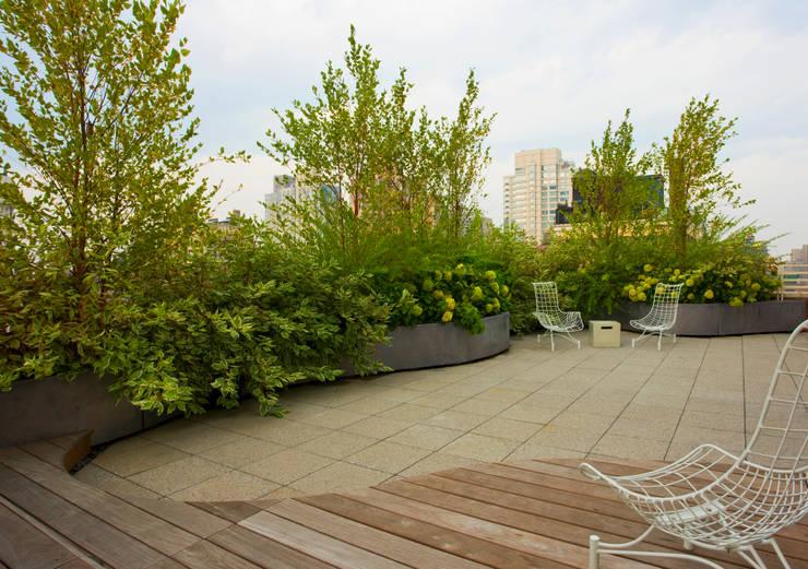 Empire State Loft, Koko Architecture + Design:  Patios & Decks by Koko Architecture + Design