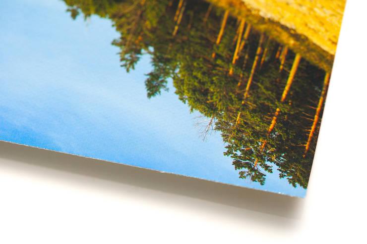 Авторский постер на холсте: Произведения искусства в . Автор – Андрей Шевелёв