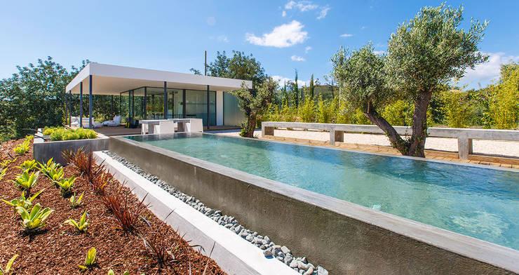 Pool by studioarte