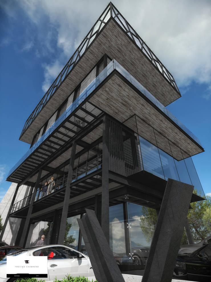 TORRE RIO ROSAS: Casas de estilo  por TREVINO.CHABRAND   Architectural Studio