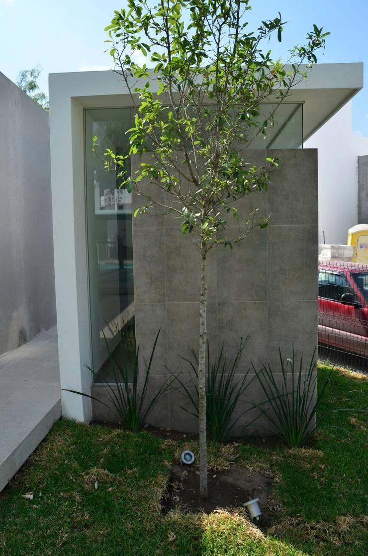 RESIDENCIA LAS MONTAÑAS: Jardines de estilo  por TREVINO.CHABRAND   Architectural Studio