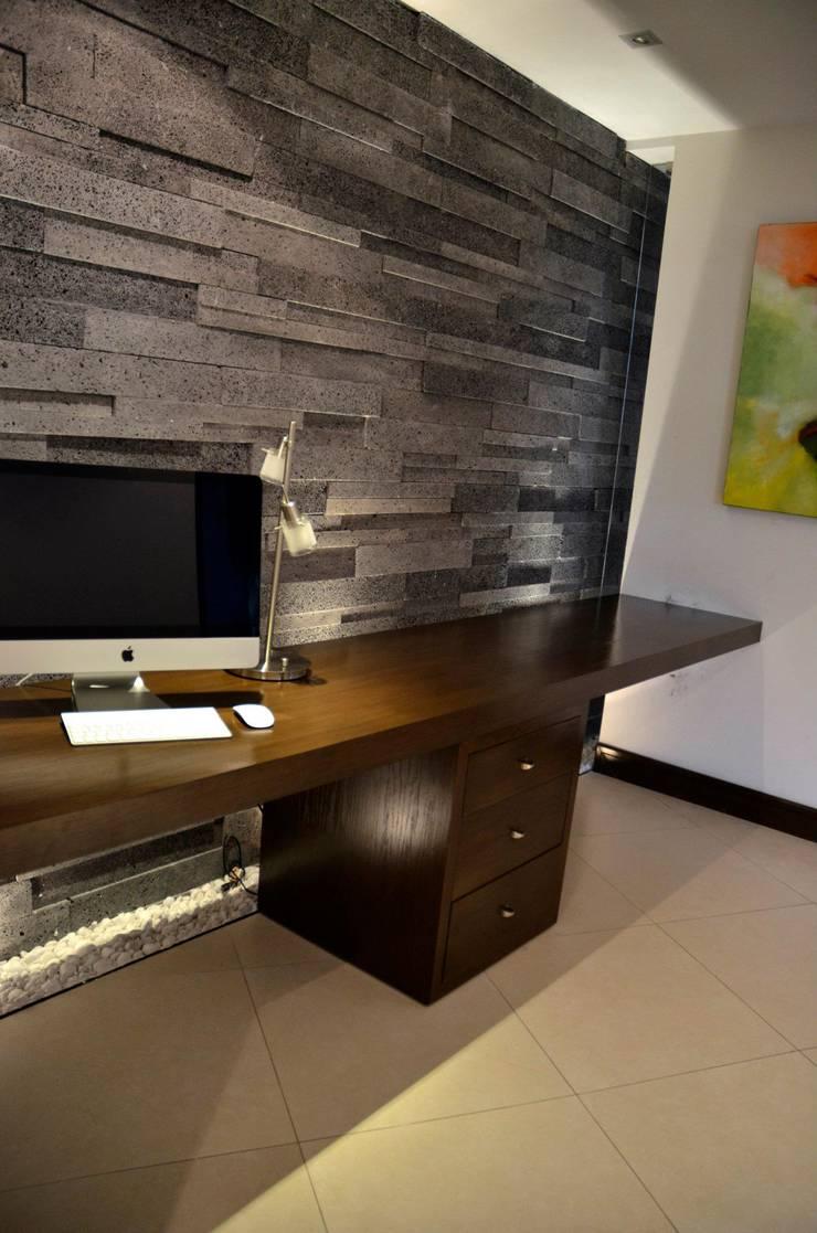 RESIDENCIA SAVOTINO: Estudios y oficinas de estilo  por TREVINO.CHABRAND | Architectural Studio