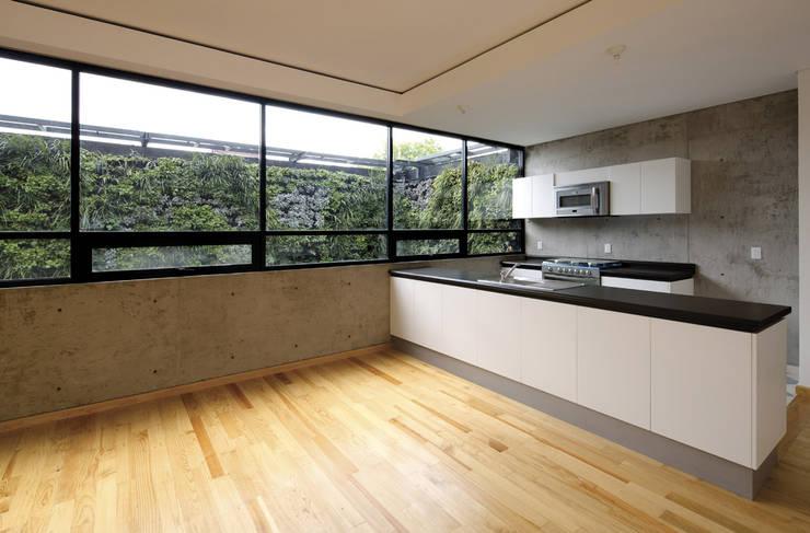 P49: Cocinas de estilo  por Taller Plan A