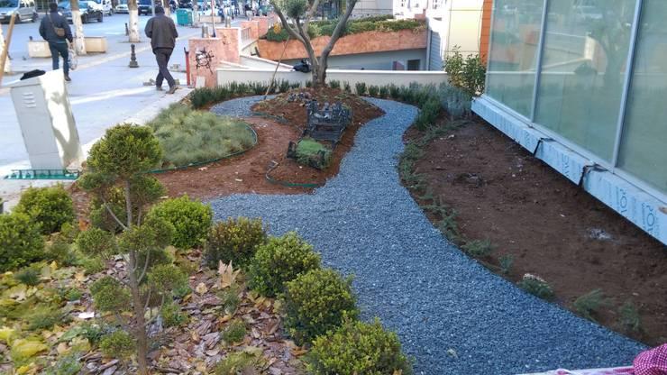 Point Peyzaj Mimarlığı – Özel Poliklinik Giriş Düzenlemesi:  tarz Bahçe, Modern