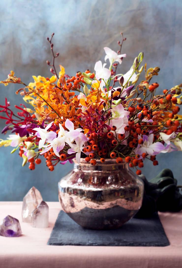 Verschiedene Herbstblumen Ideen Von Modern Living Room By Tollwasblumenmachen.de
