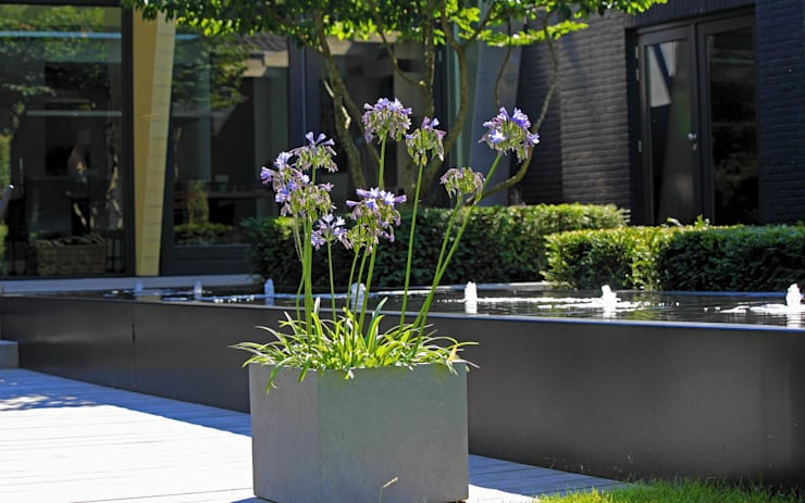 Strakke tuin tegen groene achtergrond:  Tuin door Stoop Tuinen, Modern