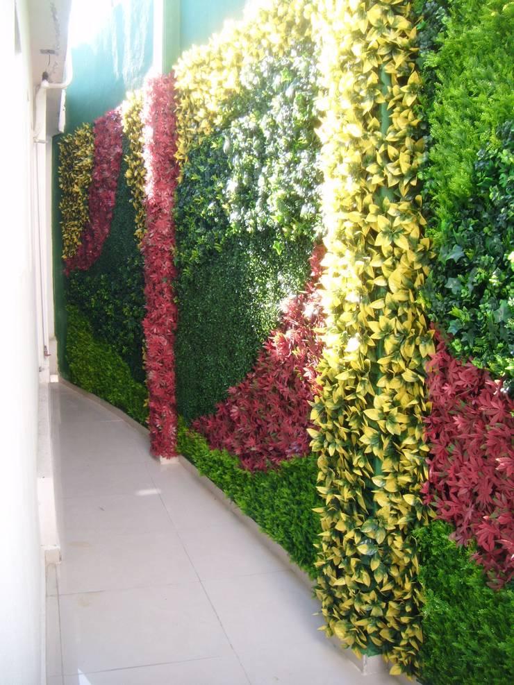 Consultorio médico: Jardines de estilo  por Arquitectura Orgánica Viviana Font