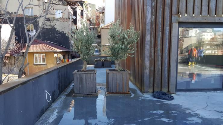 Taman Modern Oleh abelia peyzaj Modern