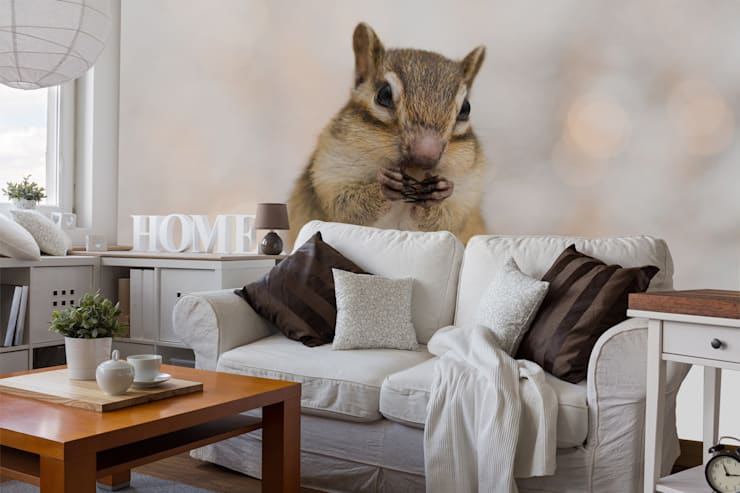 Squirrel Eating Nut Wall Mural Livings de estilo moderno de Wallsauce.com Moderno