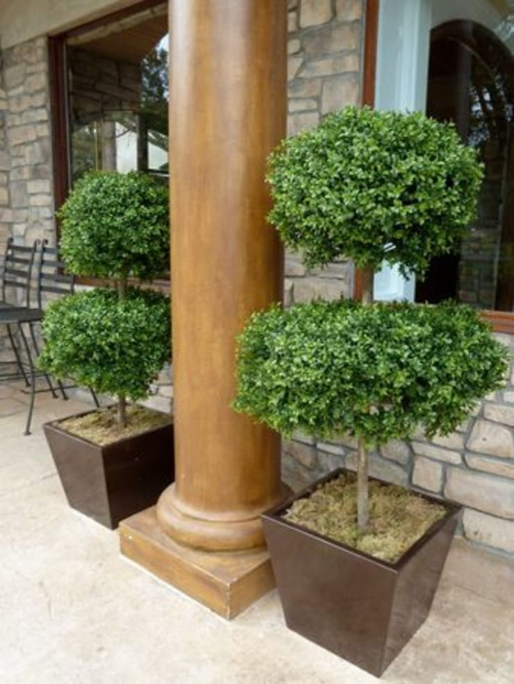 Artificial Topiary Trees: modern Houses by Sunwing Industries Ltd