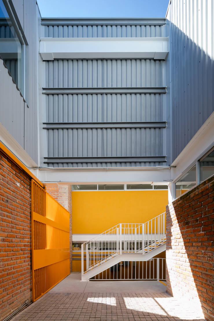 Taleny School: Gimnasios de estilo  por ARO estudio
