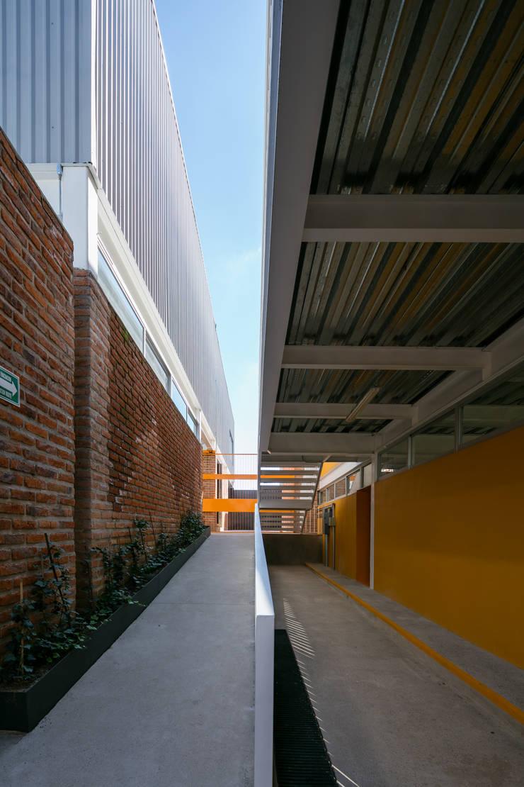 Taleny School: Pasillos y recibidores de estilo  por ARO estudio