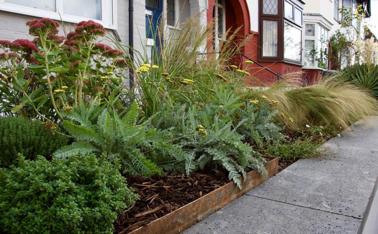 Front garden planting:  Garden by Tom Massey Landscape & Garden Design