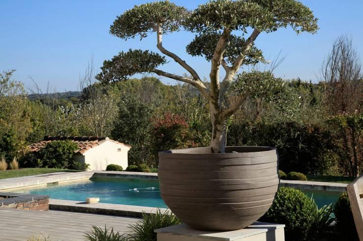 aix en provence jardin d co door conceptuelles paysage et decoration homify. Black Bedroom Furniture Sets. Home Design Ideas