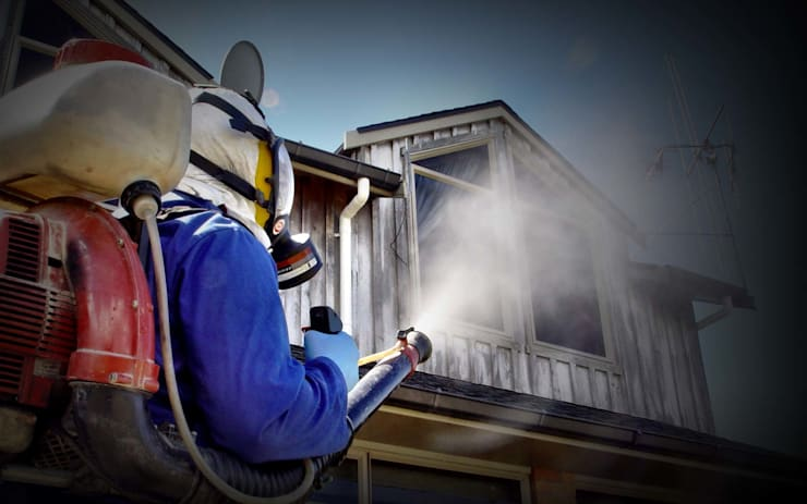 Fumigation:   by Cape Town Pest Control