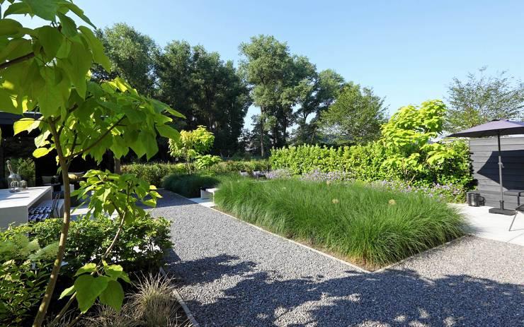 Moderne tuin in het groen von stoop tuinen homify