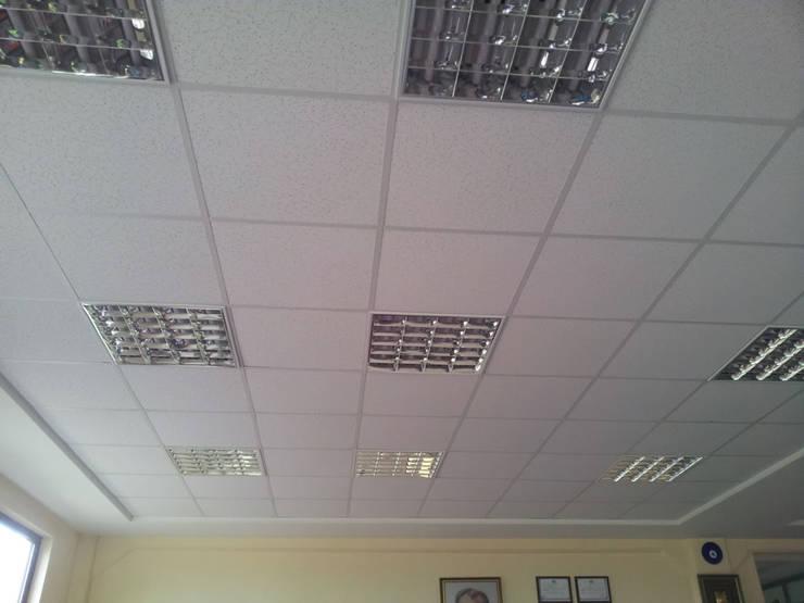 MAG Tasarım Mimarlık İnşaat Emlak San.ve Tic.Ltd.Şti. – Barış Ticaret Çorlu :  tarz Ofis Alanları, Modern