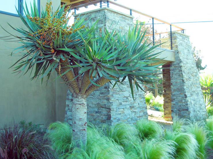 Garden by Debora Carl Landscape Design
