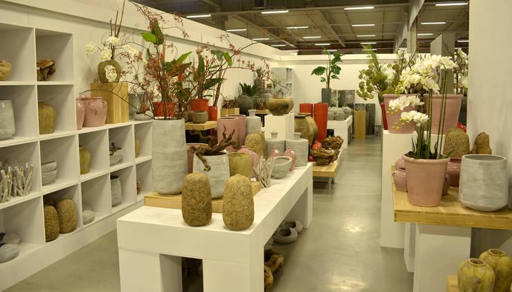 Groothandel Landelijke Woonaccessoires : Jelle quint door groothandel in decoratie en lifestyle artikelen