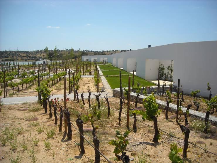 L'And Vineyards:   por Jardins do Paço