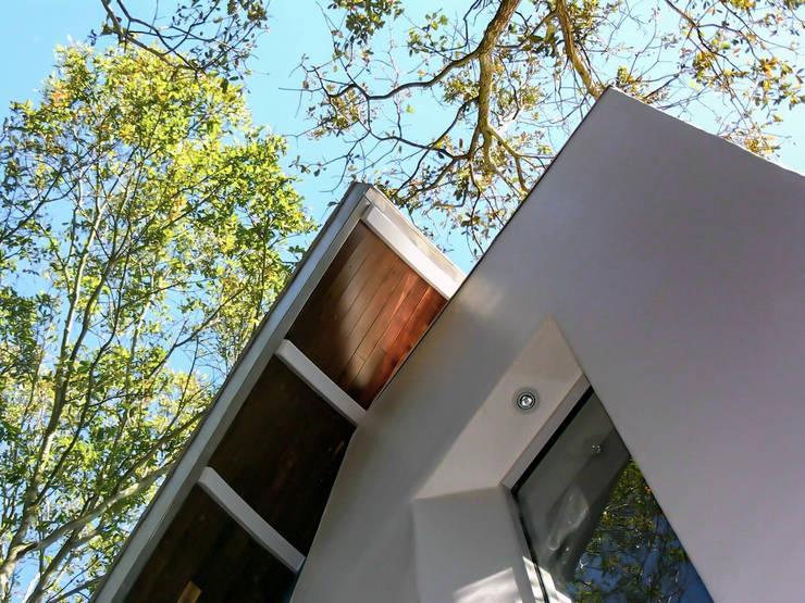 Organic Modern:  Houses by Jaju Design & Development