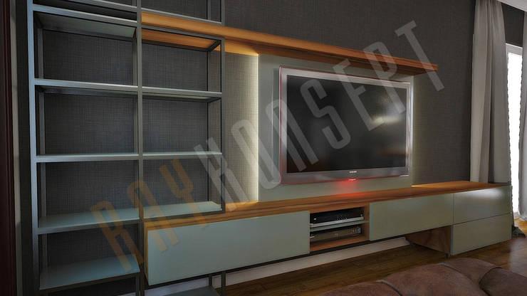 RayKonsept – Demir Raflı Tv Ünitesi:  tarz Oturma Odası,