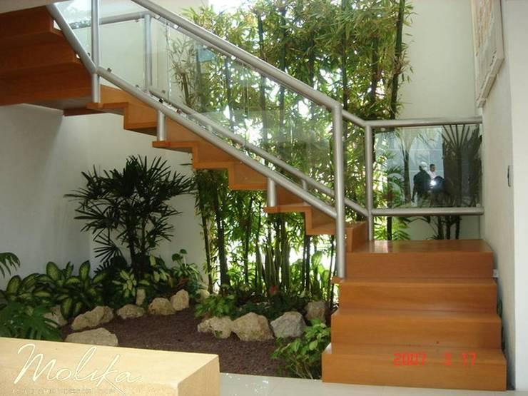 Corridor & hallway by MOLIKA