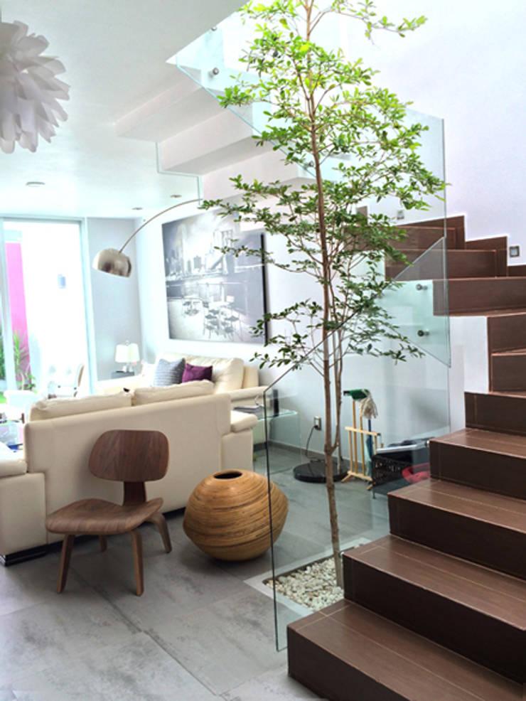 Privada Paraíso: Pasillos y recibidores de estilo  por Base-Arquitectura