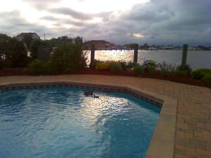 Rehabilitación de la piscina de Mrs. Lisa:  de estilo  por Avel Benapi Services, dba, ABS Pool Patrol