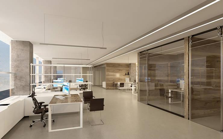 Pronil – Açık Ofis:  tarz Çalışma Odası, Modern