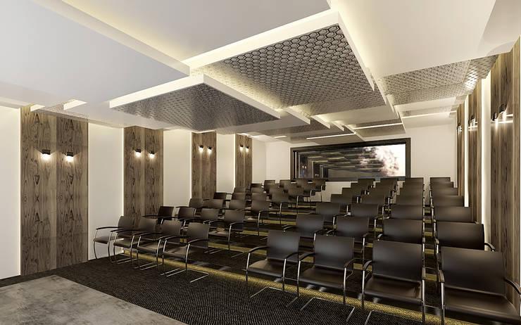 Pronil – Konferans Salonu:  tarz Multimedya Odası, Modern