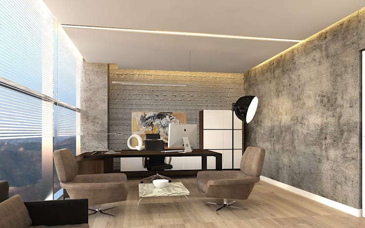Pronil – Yönetici Odası:  tarz Çalışma Odası, Modern