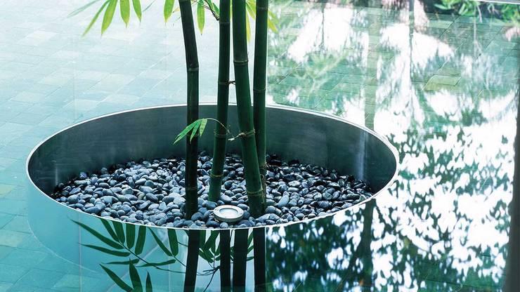Whitehouse Park:  Garden by HB Design Pte Ltd,Asian