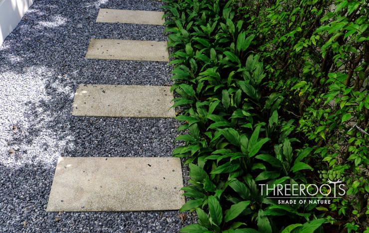 สวนคุณก้อย:   by Threeroots Group Co.,Ltd.