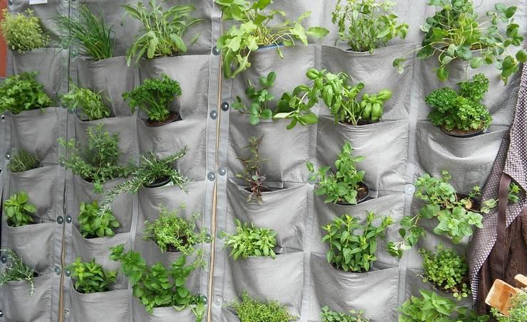 Vertical Veg Panels:  Garden  by Vertical Veg (Pty) Ltd