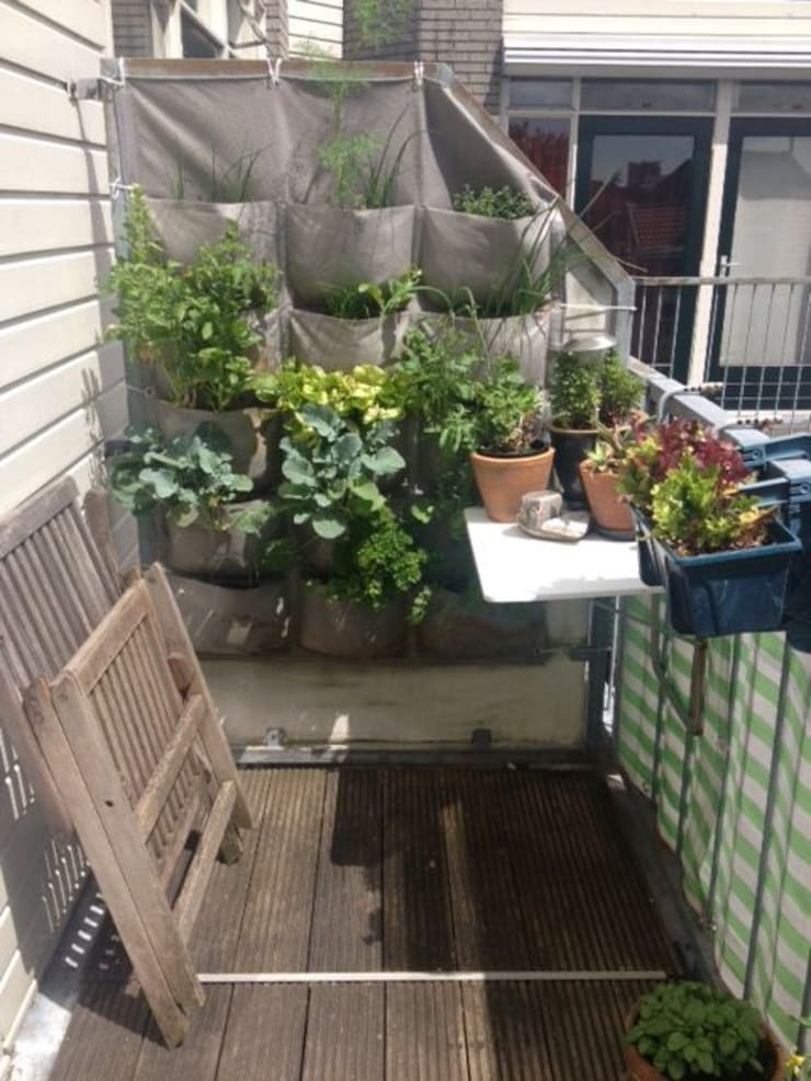 15 pocket panel on a balcony in Holland: eclectic  by Vertical Veg (Pty) Ltd, Eclectic