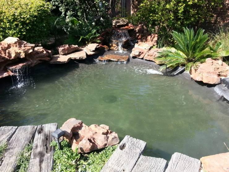 Pond Upgrade – Bryanston - After:  Garden by Isivande fish ponds