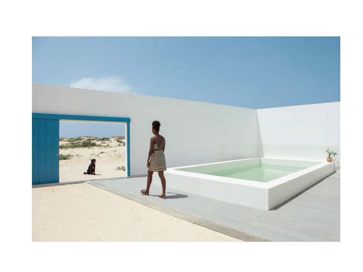 Jardines de estilo  de Nuno Almendra, Minimalista