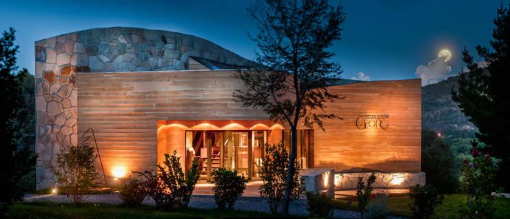 Museo Georg: Estudios y oficinas de estilo  por Sidoni&Asoc