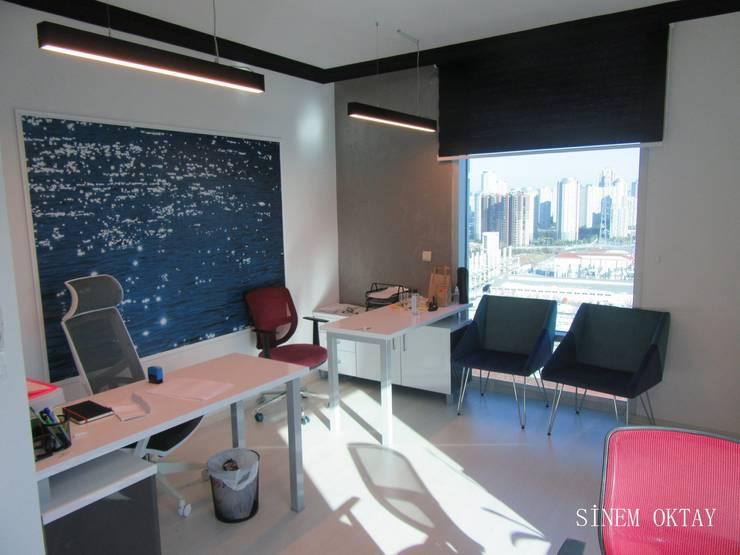 Sinem Oktay – ofis it:  tarz Ofis Alanları, Modern