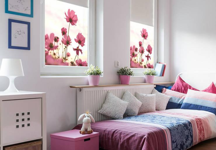 Sichtschutzfolie Pinke Kosmeen: modern  von K&L Wall Art,Modern Kunststoff Braun