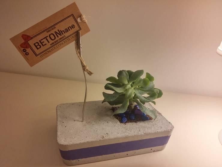 BETONhane – BETONhane farki ile Beton masaüstü notluk ve kaktüs: minimalist tarz , Minimalist Bambu Yeşil