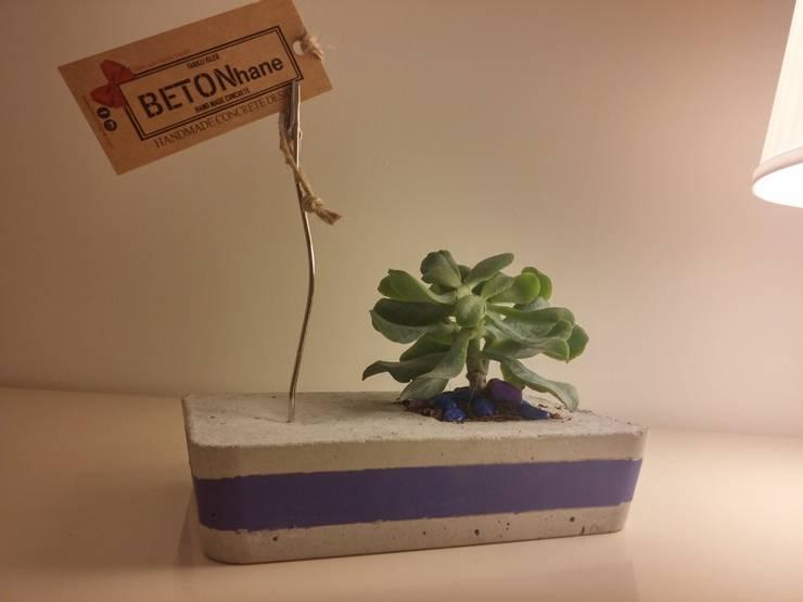 BETONhane – BETONhane farki ile Beton masaüstü notluk ve kaktüs: minimalist tarz , Minimalist Beton