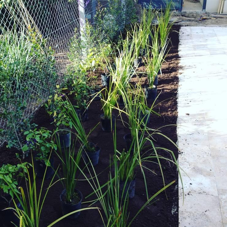 Obras Verdes: Jardines de estilo  por LANDSCAPE