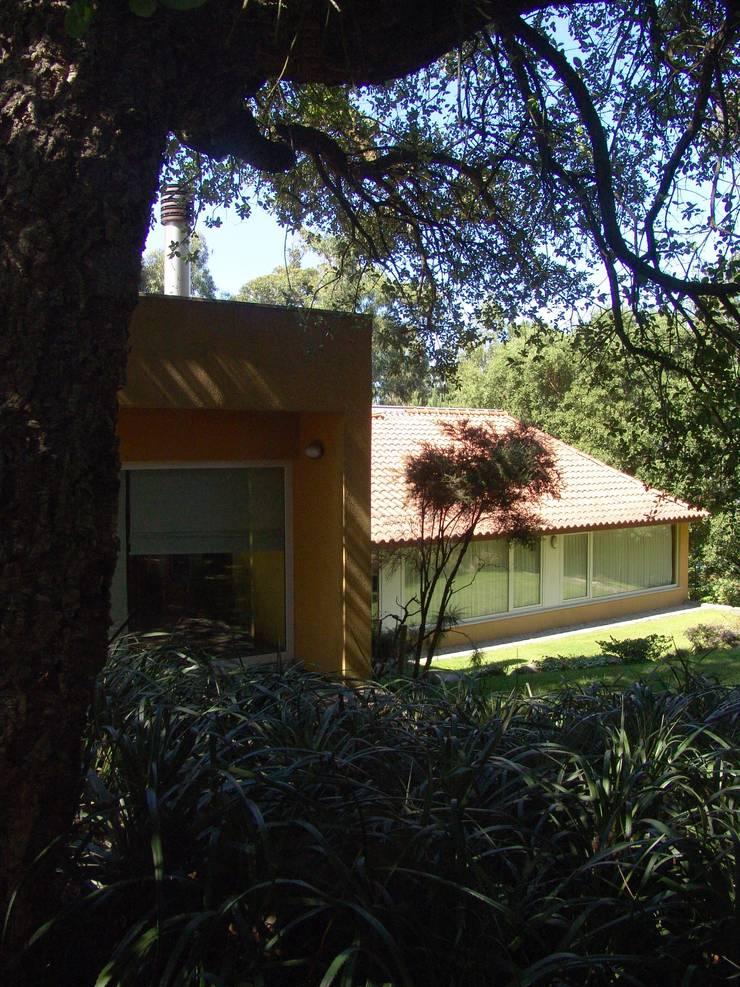 Casa na Praia da Madalena: Jardins  por José Soares Arquitecto LDA